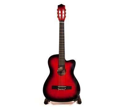 Акустическая гитара - аренда, прокат, фото 1