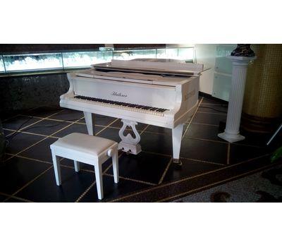 """Белый рояль """"Bluthner"""" - аренда, прокат, фото 2"""