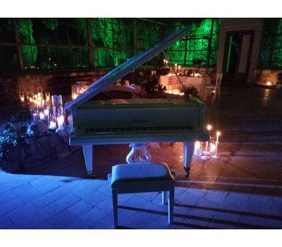 """Белый рояль """"Bluthner"""" - аренда, прокат, фото 4"""
