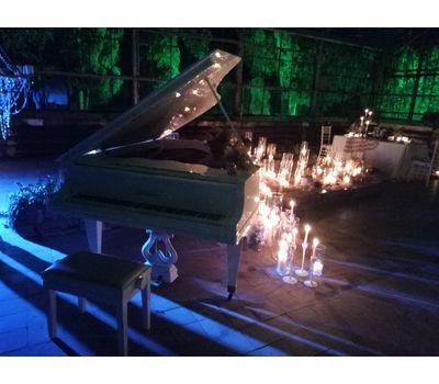 """Белый рояль """"Bluthner"""" - аренда, прокат, фото 5"""