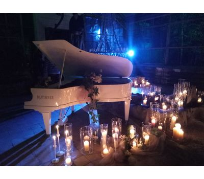 """Белый рояль """"Bluthner"""" - аренда, прокат, фото 6"""