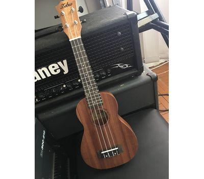 Гитара укулеле Zebra - аренда, прокат, фото 2